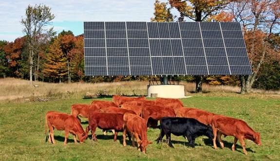Сонячна електростанція в Україні