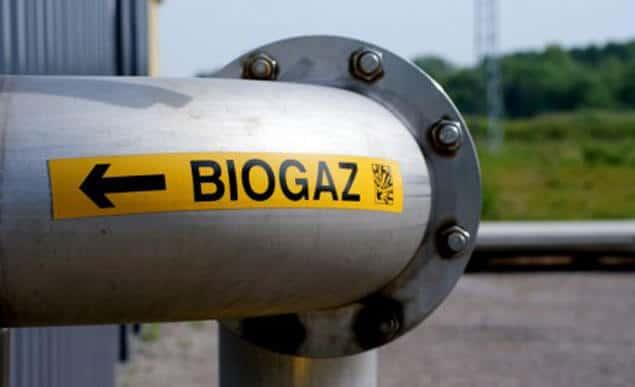 На Рівненщині вироблятимуть електроенергію з біогазу