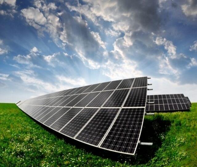 Сонячні ферми позитивно впливають на флору і фауну