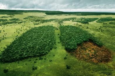 У 2016 році Україна виділила для вирішення екологічних проблем 220 млн гривень