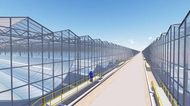 Сонячні панелі використовуватимуть для видобутку нафти